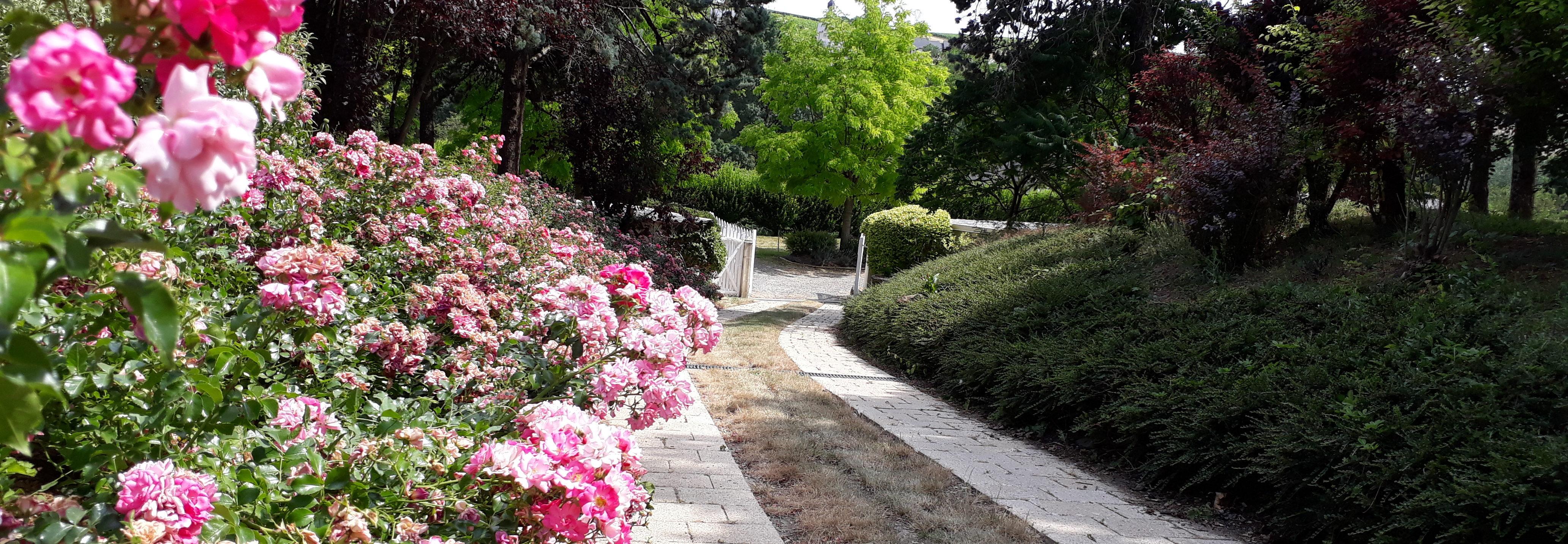 Parc Arboré au Domaine du Parc